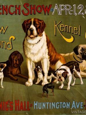 """Купить для интерьера на стену Постер """"Выставка собак"""" Бостон 1890"""