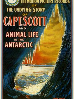 """Купить для интерьера на стену Постер к/ф """"Капитан Скотт и жизнь животных в Антарктике"""" США 1913"""
