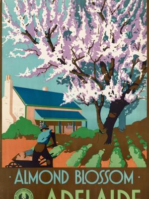 """Купить для интерьера на стену Постер """"Время цветения миндаля. Аделаида"""" Австралия 1947"""