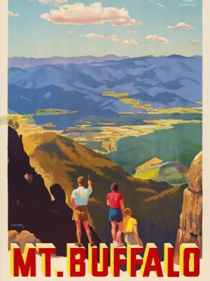 """Винтажный Ретро Постер """"Национальный парк «Маунт-Баффало». Возьмите Kodak"""" Австралия 1930 для интерьера купить"""