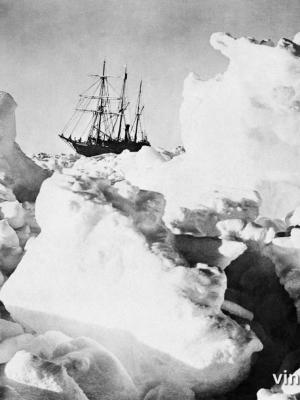 """Винтажный Ретро Постер """"Парусник «Endurance» скованный льдом"""" Антарктида 1916 для интерьера купить"""