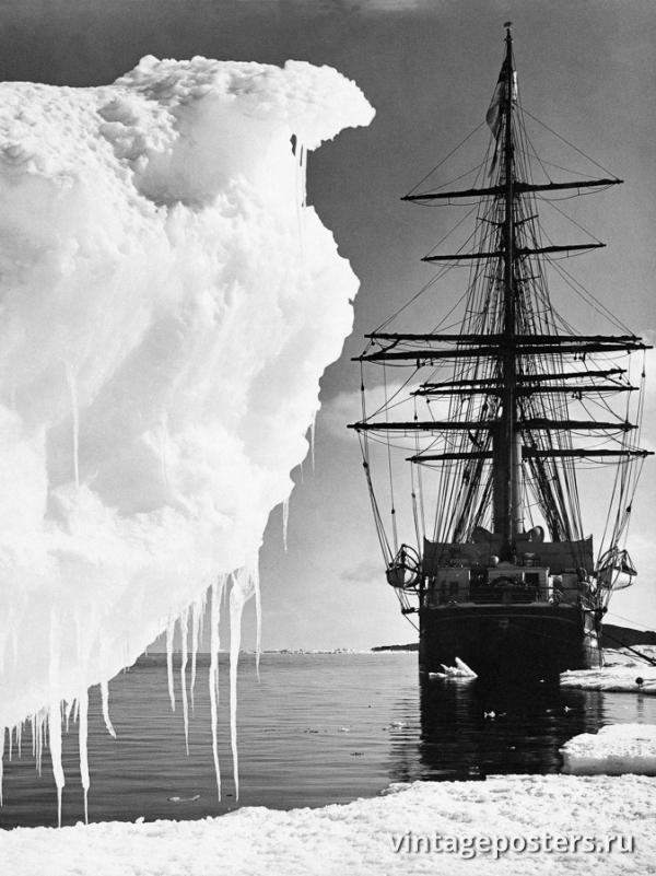 """Винтажный Ретро Постер """"Барк «Терра Нова» в экспедиции"""" Антарктида 1912 для интерьера купить"""