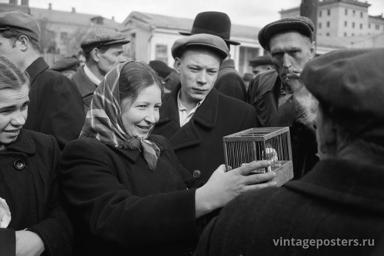 Фото старой Москвы 1950 годов: Калитниковский птичий рынок. 1956г №10