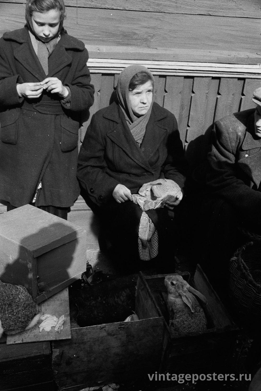 Калитниковский птичий рынок. Кролики. Москва. 1956г.