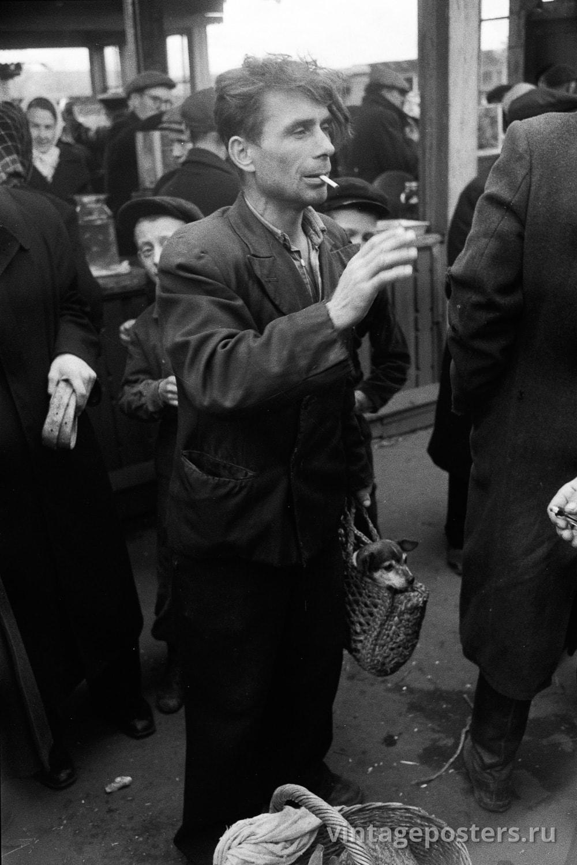 Калитниковский птичий рынок. Щенки. Москва. 1956г.