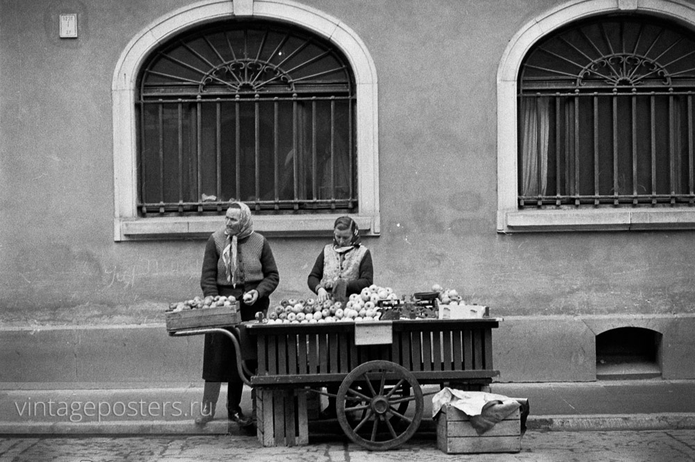 Уличная торговля яблоками. Варшава, Польша. 1956г.