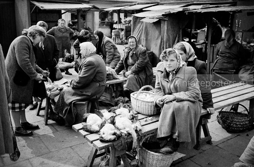 Продуктовый рынок. Птичьи ряды. Варшава, Польша. 1956г. Фото №54