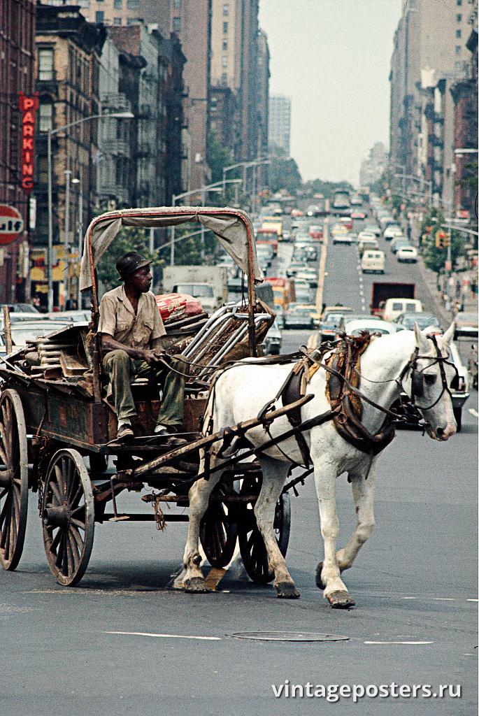 Мужчина в повозке возвращается домой в Гарлем, 1970г.