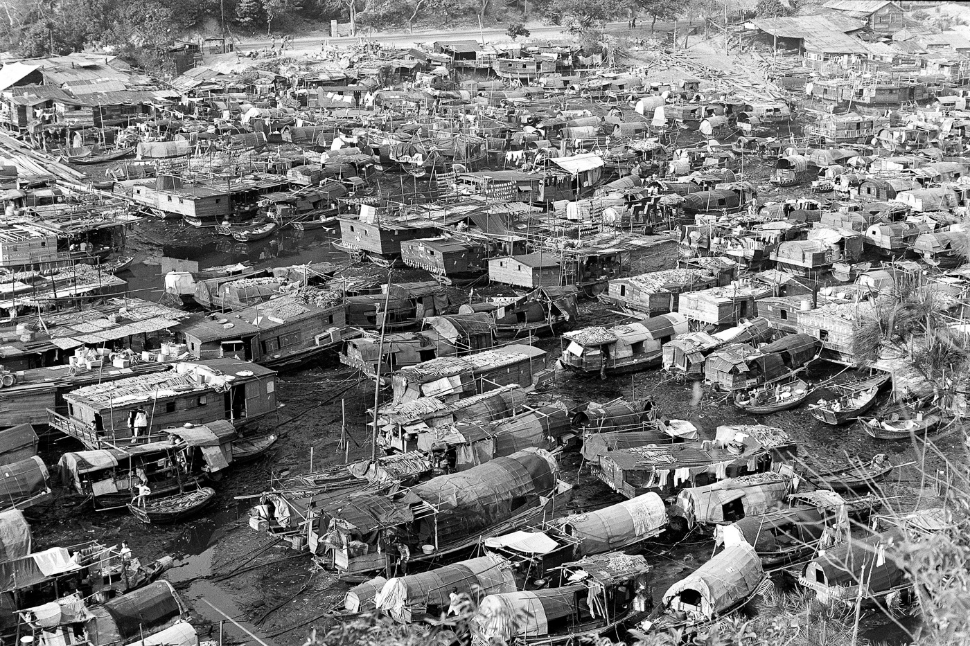 Остров Гонконг, 1962 год
