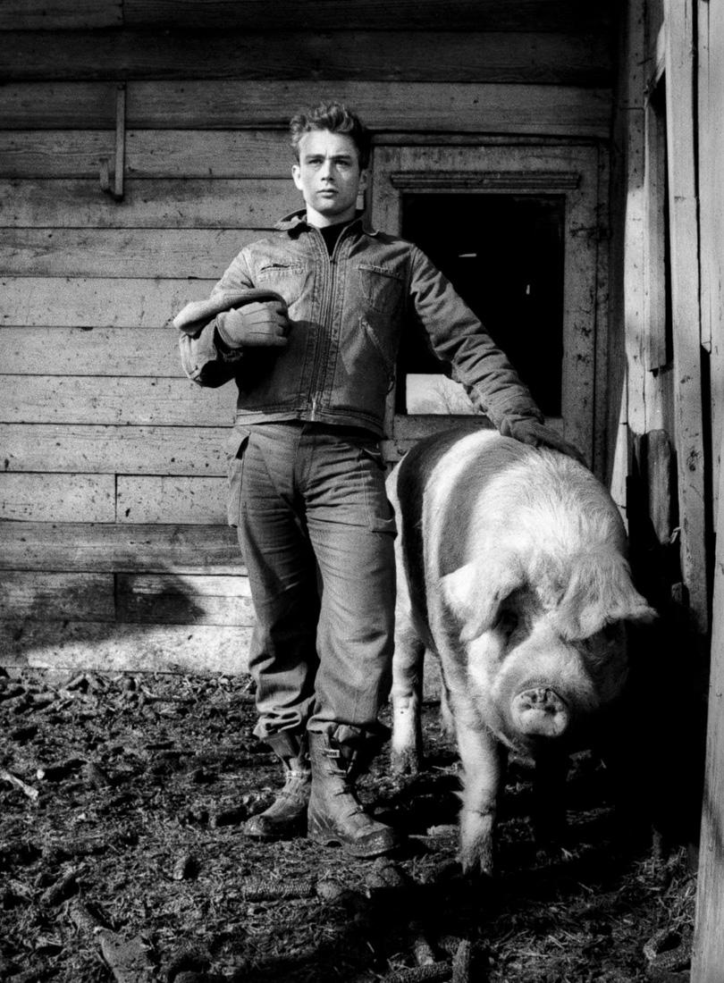 Джеймс Дин на ферме, 1955 год