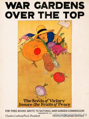 """Винтажный Ретро Постер """"Семена победы обеспечивают плоды мира"""" США 1919 для интерьера купить"""