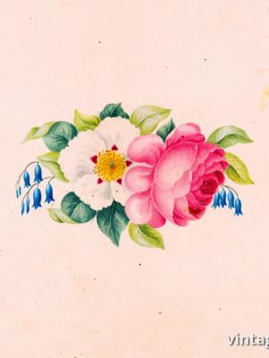 """Винтажный Ретро Постер """"Акварель Цветочная композиция с красной розой или пионом"""" Франция 1830 для интерьера купить"""
