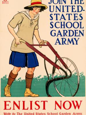 """Винтажный Ретро Постер """"Вступай в армию школьных садов США - записывайся сейчас"""" США 1918 для интерьера купить"""