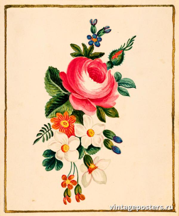 """Винтажный Ретро Постер """"Акварель Композиция пиона с другими цветами"""" Франция 1820 для интерьера купить"""